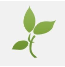 Berkemann: Larena virágos női cipő